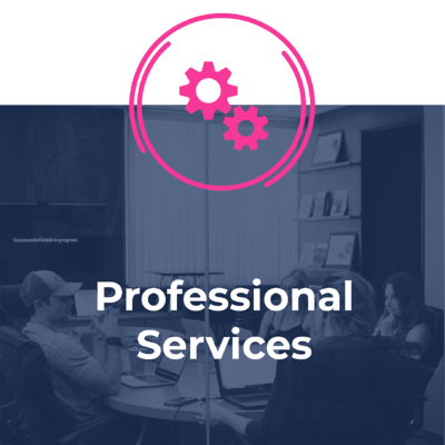 Services - Technology Services-professional services