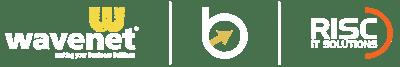 RISC BB Webinars May June 2020 website